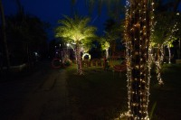 LIGHTING DECOR with Mirchi lights