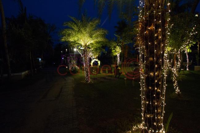 LIGHTING DECOR with Mirchi lights