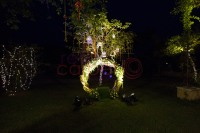 Mehndi stage decor with tree and hangings